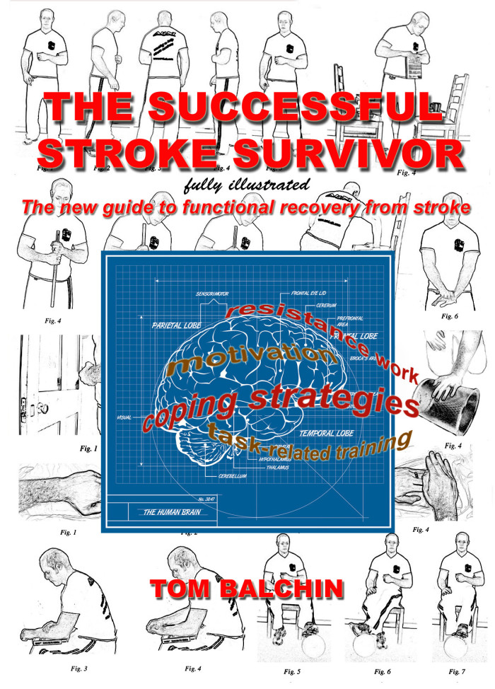 front cover for book 2 e1435090403326 - Successful Stroke Survivor Manual - Stroke Exercise Training - online courses for therapists